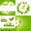 Set From Flower Backgrounds With Ladybug - Stock Vector