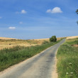 Road in the country in summer under the sun — Stock Photo