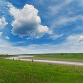 曇り空の下で緑の草の川 — ストック写真
