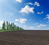 Black plowed field under blue sky — Stock Photo