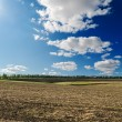 Black ploughed field under deep blue sky with clouds — Stock Photo #11073877