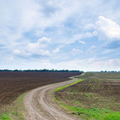 Cloudy sky and winding path — Stock Photo