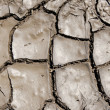 Wet earth as texture - Stock Photo