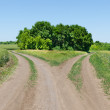 Stock Photo: Two rural road beetwen fields