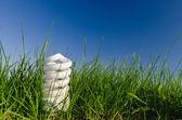 Energy saving lamp in green field — Stock Photo