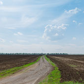 Country road to horizon in cloudy sky — Stock Photo