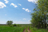 Winding rural road to horizon under cloudy sky — Foto de Stock