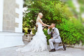 Wedding, kneeling Groom Kissing the Hand of His Bride — Stock Photo
