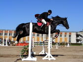 Man show jumping on black horse — Stock Photo