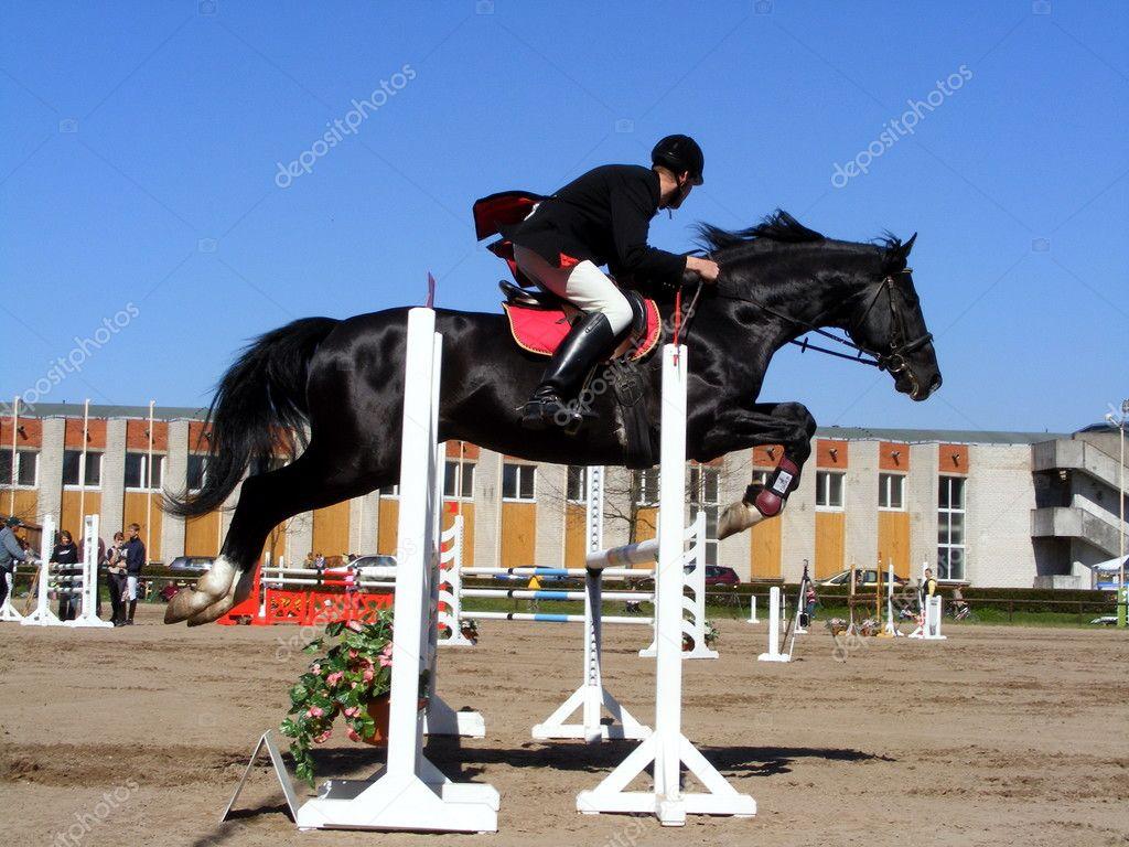 Black horses jumping - photo#16