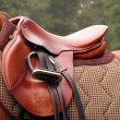 Stock Photo: Red saddle on horse