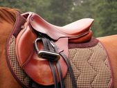 Red saddle on the horse — Stock Photo