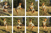 Russian toy terrier jumping — Stock Photo