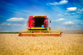 Combine harvester on a wheat field with a blue sky — Stockfoto
