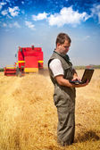Farmer calculating earning in field — Stockfoto