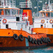 Tugboat in the approaching and passenger boat — Stock fotografie
