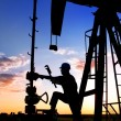 Pumpjack — Stock Photo #11729644