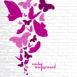 Pink butterflies on a wall background — Stock Vector