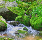Small streams over mossy rocks — Stock Photo