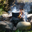 Pan on a fire — Stock Photo #11649059