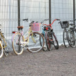 Bicycle parking in St.Petersburg — Stock Photo