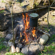 Pan on a fire — Stock Photo #11758136