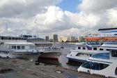River cruise ships — Stock Photo