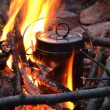 Pan on a fire — Stock Photo #12248079