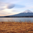 Mt. Fuji — Stock Photo #11261940