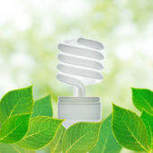 Energy saving lamp concept — Stock Photo