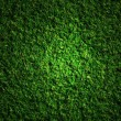 Royalty-Free Stock Photo: Grass field at night