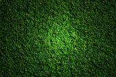 Grass field at night — Stock Photo