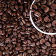 Coffee beans background — Stock Photo #11542244
