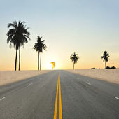 Road and the sunset sky — Stock Photo