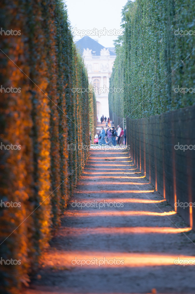 VERSAILLES - JULY 21: Light and Thuya Corridor at The Fountains Night Show on July 21, 2012 in Versailles — Stock Photo #11843345