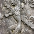 Lion on the blazon — Stock Photo