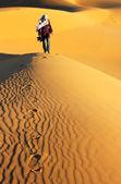 Traveling in the desert — Stock Photo