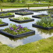 Stock Photo: Flowerbeds in water