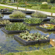 Stock Photo: Pond with flowerbeds