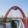 """Pictorial bridge"", Moscow — Stock Photo"