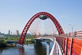 """""""Pictorial bridge"""", Moscow — Stock Photo"""