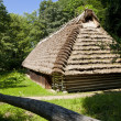 Traditional wooden house — Photo