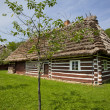 Traditional wooden house — Foto de Stock