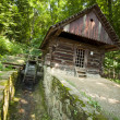 Old traditional water-mill — Stockfoto #12126794