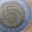 Close up of polish currency - 5 zloty coin — Stock Photo #12365848