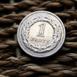 Close up of polish currency - 1 zloty coin — Stock Photo #12365923