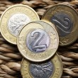 Close up of polish currency - 2 zloty coin — Stock Photo #12365940