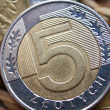 Close up of polish currency - 5 zloty coin — Stock Photo #12365950