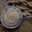 Close up of polish currency - 5 zloty coin — Stock Photo