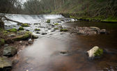 Freshwater river in Edinburgh - Scotland — Stock Photo
